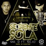 Mr. D Ft. Ñejo – Se Siente Sola